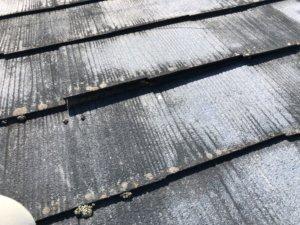 京都府亀岡市での台風被害調査